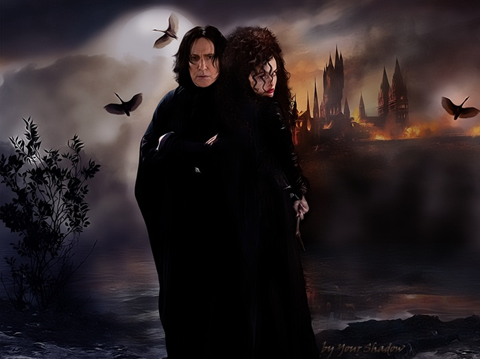 hermoine snape is a fanfiction author that has written 78 stories for Harry Potter Phineas and Ferb Doctor Who Merlin Merlin Torchwood and Broadchurch